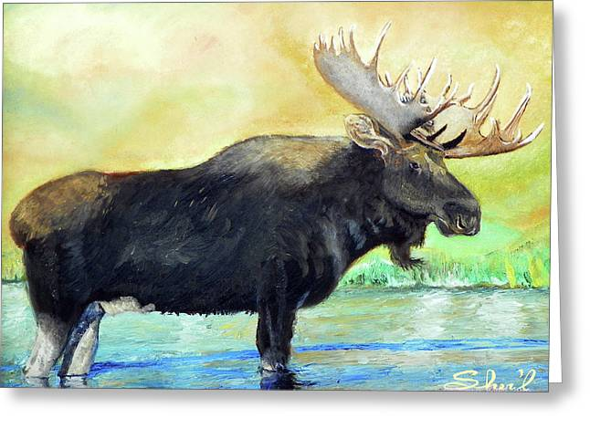 Greeting Card featuring the painting Bull Moose In Mid Stream by Sherril Porter