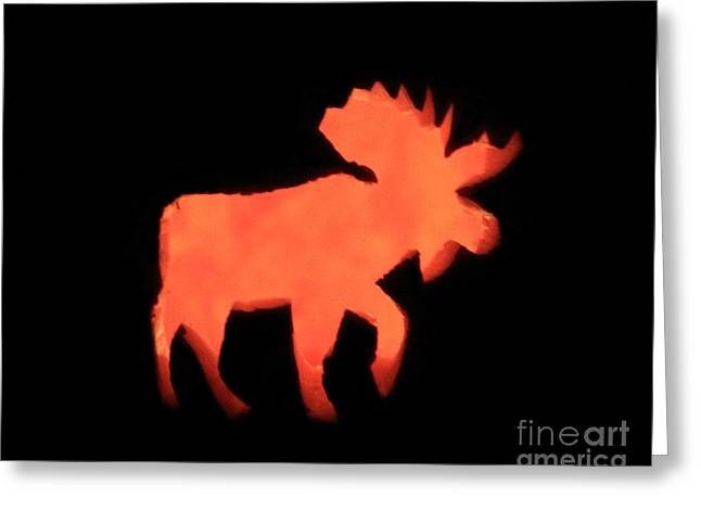Bull Moose Pumpkin Greeting Card by Lloyd Alexander