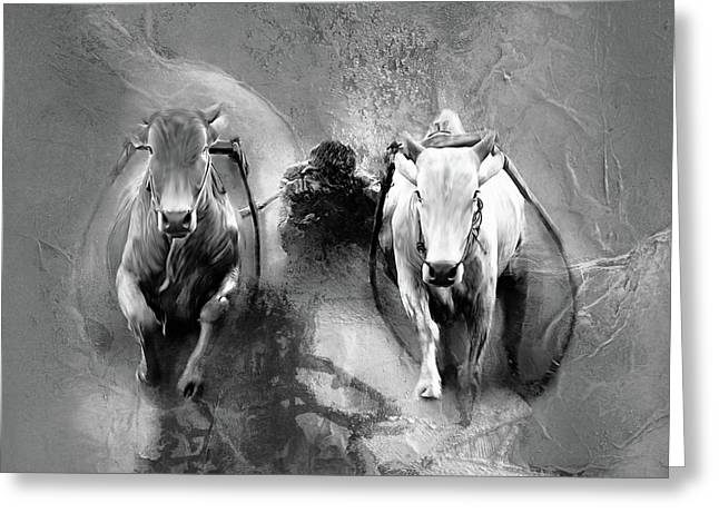Bull Race 3321 Greeting Card by Gull G