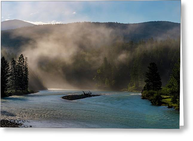 Bull River At Sunrise Greeting Card by Darcy Michaelchuk