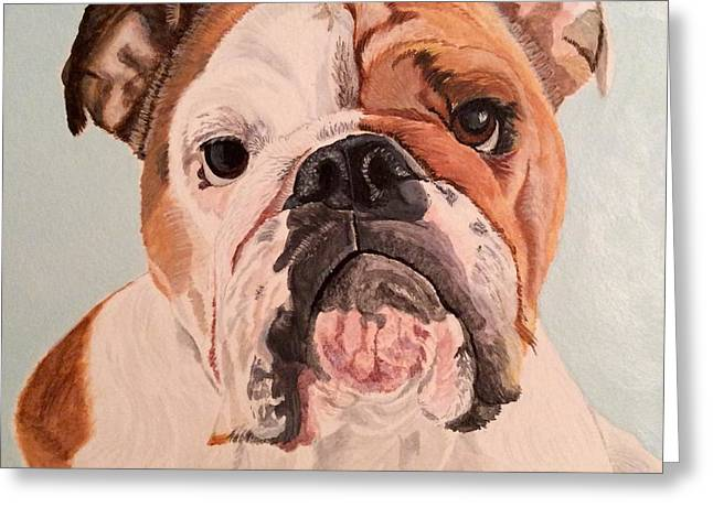 Bulldog Beauty Greeting Card