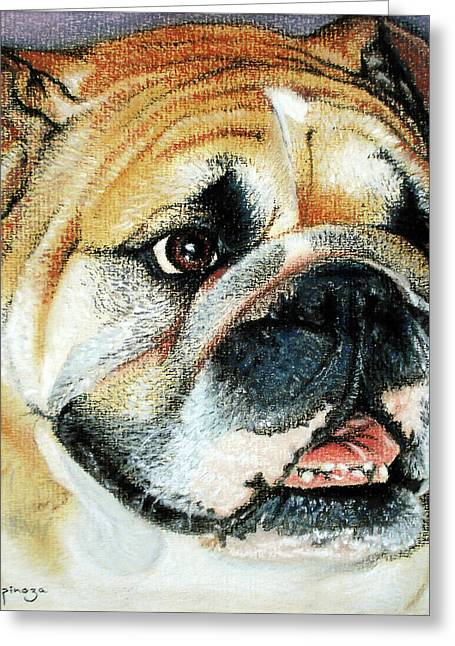 Unique Art Pastels Greeting Cards - Bulldog Head Portrait Greeting Card by Jose Espinoza