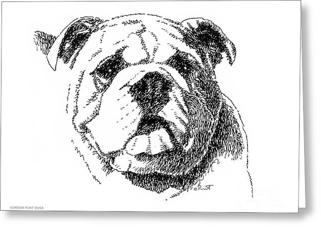 Sized Drawings Greeting Cards - Bulldog-Portrait-Drawing Greeting Card by Gordon Punt