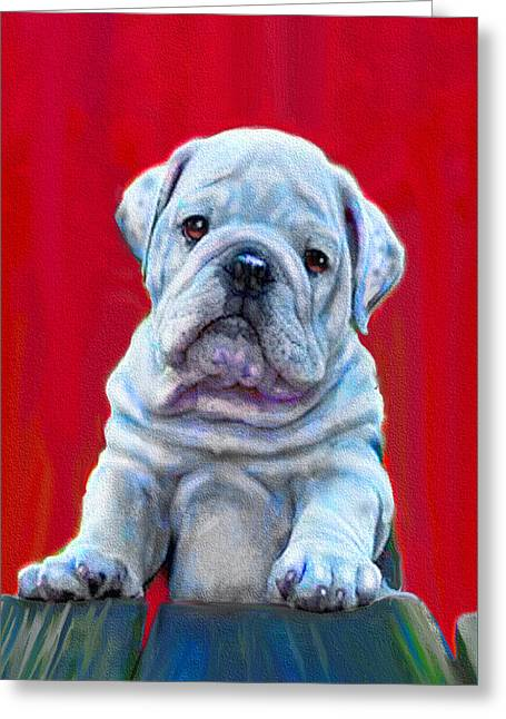 Bulldog Puppy On Red Greeting Card by Jane Schnetlage