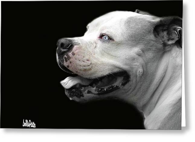 Bulldog Sando  Portrait  Greeting Card