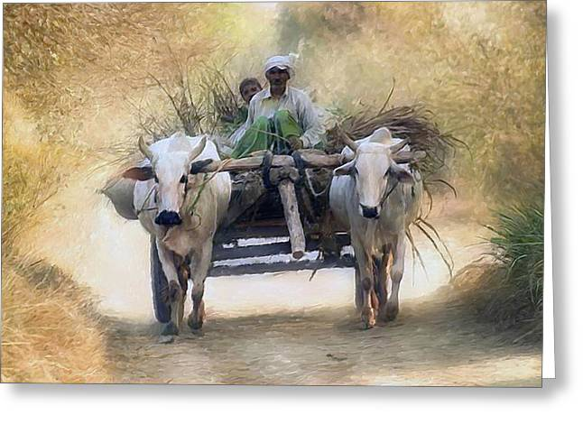 Bullock Cart Greeting Card by Shreeharsha Kulkarni