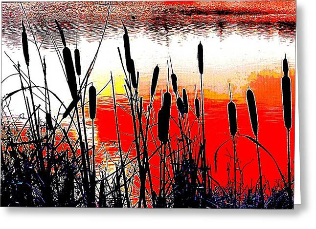 Bullrushes Against The Sunset Greeting Card
