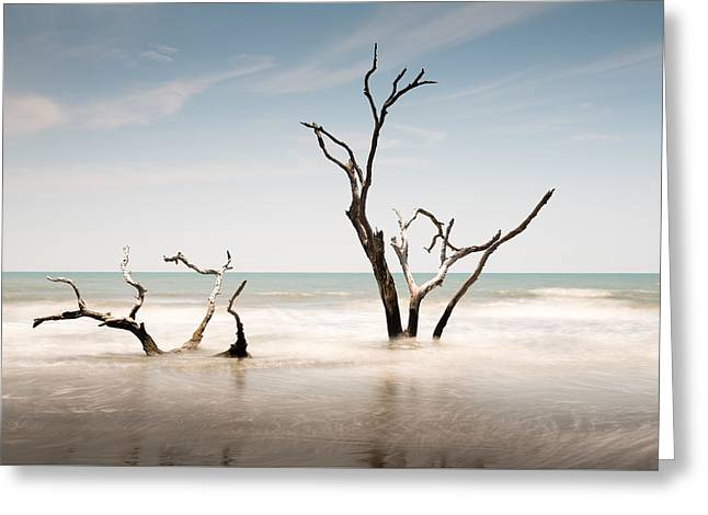 Bulls Island C-v Greeting Card by Ivo Kerssemakers