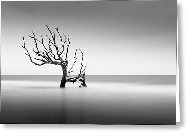 Boneyard Beach  Xiv Greeting Card by Ivo Kerssemakers