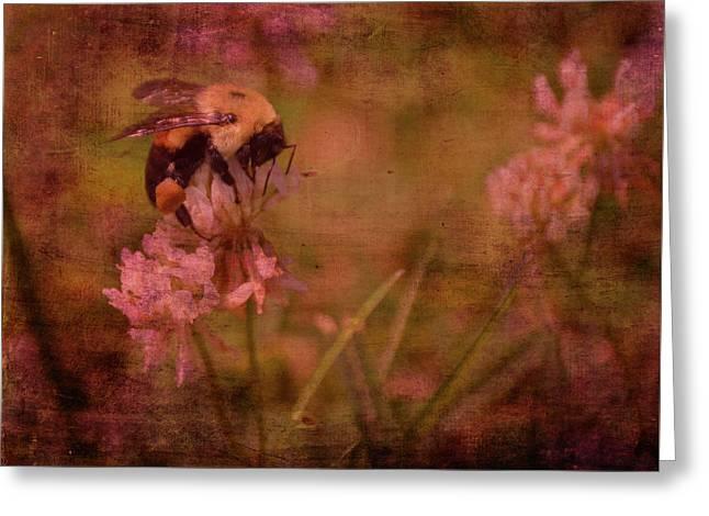 Bumble Bee Serenade Greeting Card