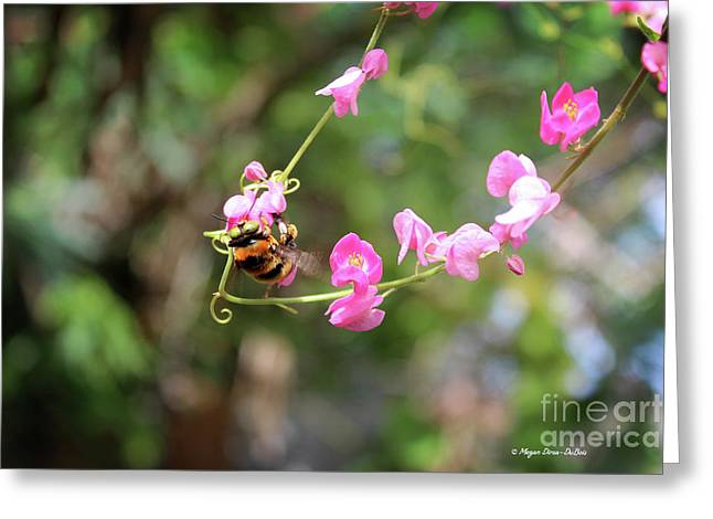 Greeting Card featuring the photograph Bumble Bee1 by Megan Dirsa-DuBois