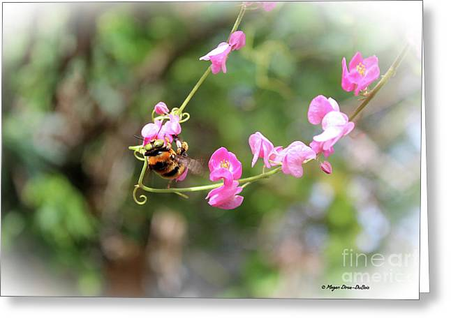 Greeting Card featuring the photograph Bumble Bee2 by Megan Dirsa-DuBois