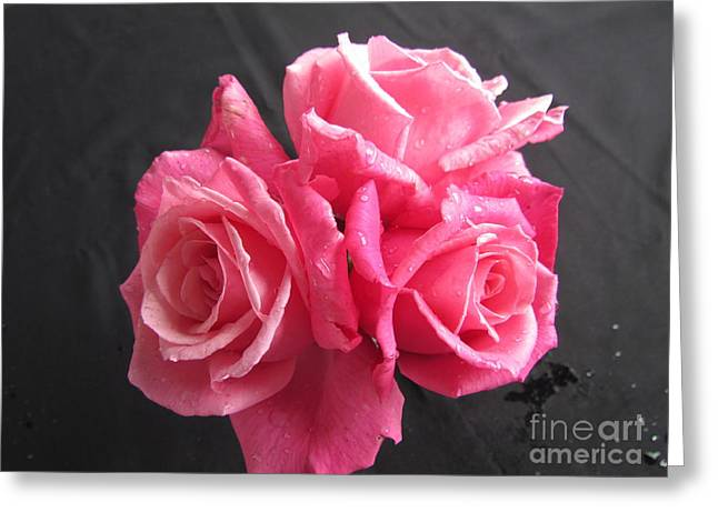 Bunch Of Roses Greeting Card by Joyce Woodhouse