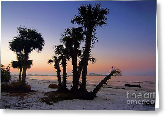 Bunche Beach Preserve Greeting Card