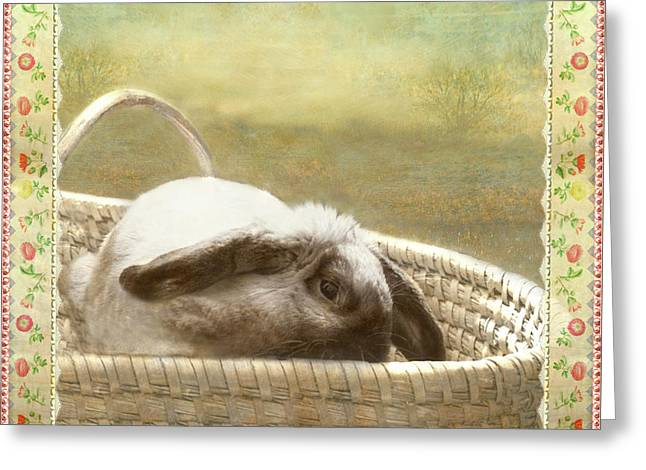 Bunny In Easter Basket Greeting Card