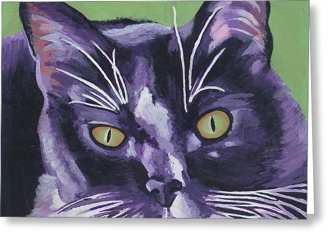Tuxedo Black And White Cat Greeting Card