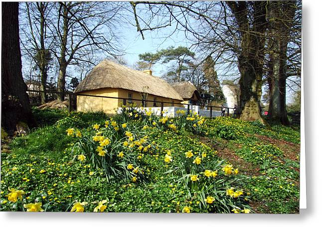 Bunratty Cottage Greeting Card by John Quinn
