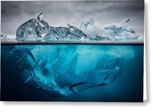 Buoyancy Greeting Card by Justin Hofman