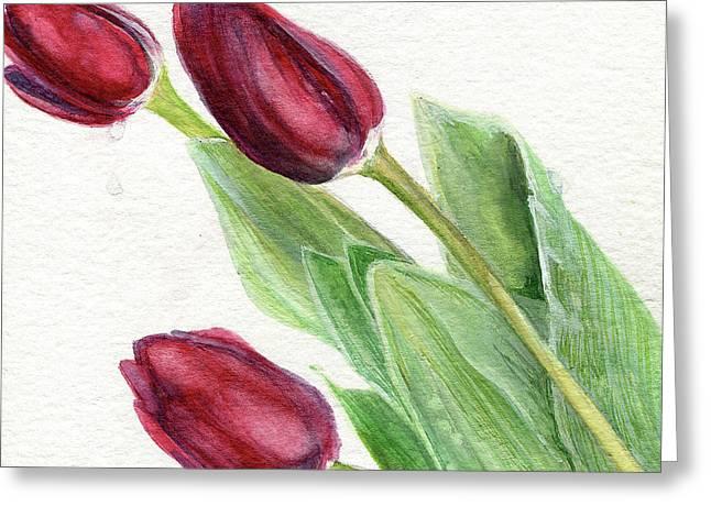 Burgundy Tulips Greeting Card