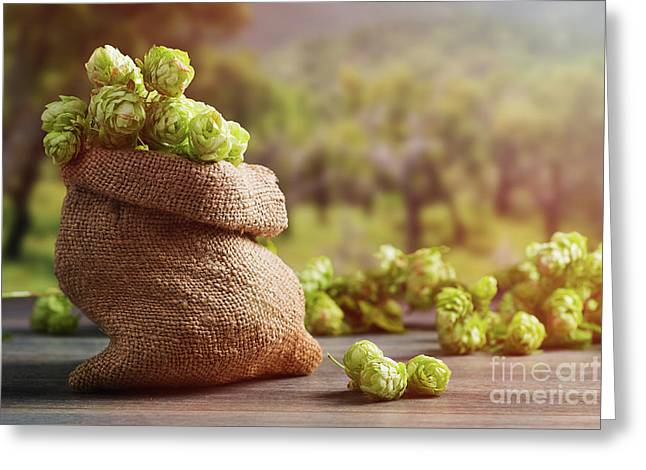 Burlap Sack Filled With Hops Greeting Card by Amanda Elwell