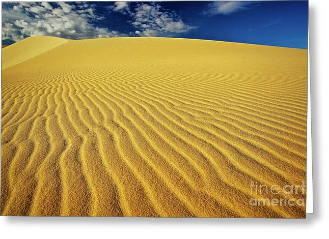 Burning Up At The White Sand Dunes - Mui Ne, Vietnam, Southeast Asia Greeting Card