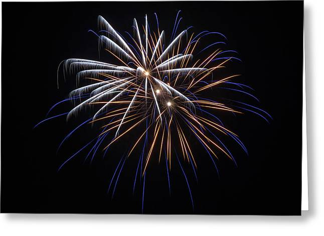 Greeting Card featuring the photograph Burst Of Elegance by Bill Pevlor
