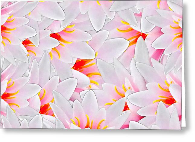 Bursting With Joy Greeting Card by Stacey Chiew