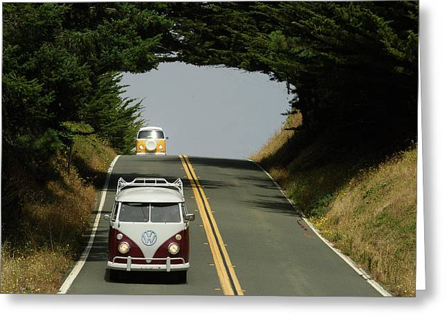 Buses And A Tunnel Of Trees Greeting Card