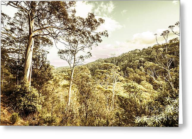 Bush Views And Lookouts Greeting Card