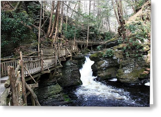 Bushkill Falls Boardwalk 2 Greeting Card
