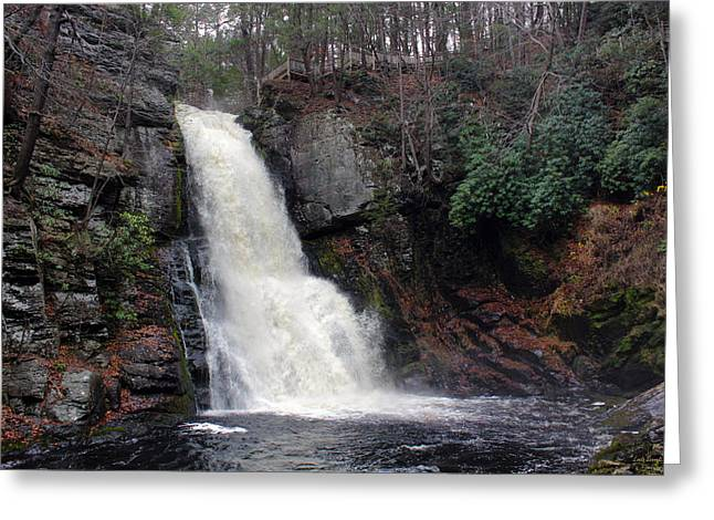 Greeting Card featuring the photograph Bushkill Falls by Linda Sannuti