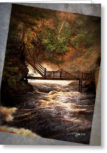 Greeting Card featuring the photograph Bushkill Falls by Phil Mancuso