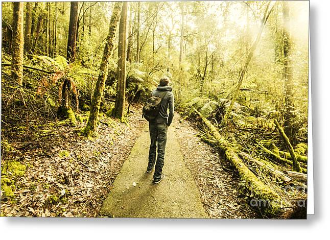 Greeting Card featuring the photograph Bushwalking Tasmania by Jorgo Photography - Wall Art Gallery