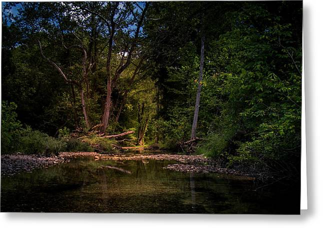 Busiek State Forest Greeting Card