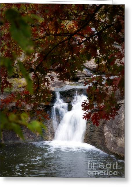 Butcher Falls In Autumn Colors Greeting Card by Fred Lassmann