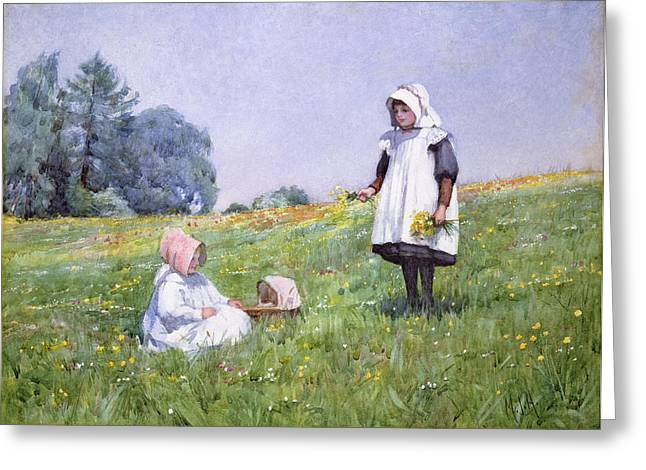 Buttercups And Daisies Greeting Card by Minnie Jane Hardman