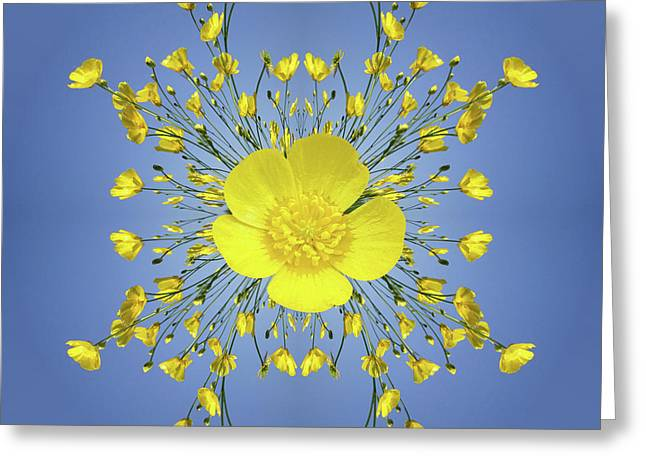 Buttercups In The Round Greeting Card by Neil Finnemore