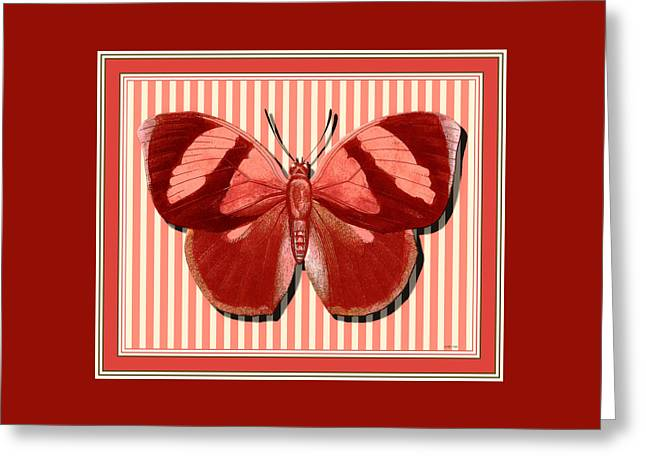 Butterfly 24 Greeting Card by Robert Todd
