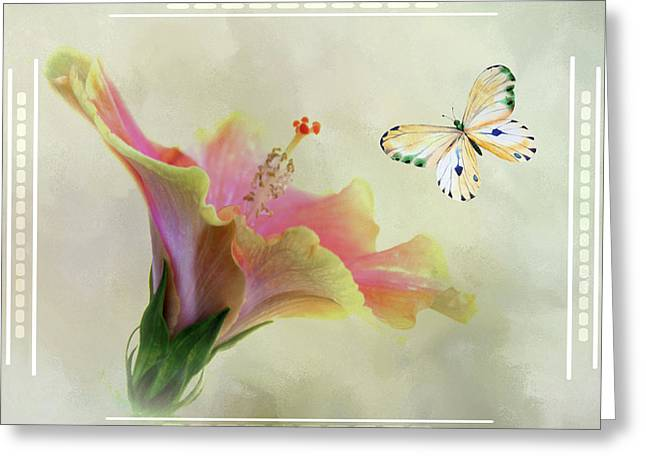 Butterfly And Fiesta Hibiscus Greeting Card