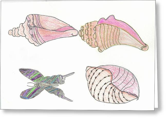 Butterfly And Seashells Greeting Card