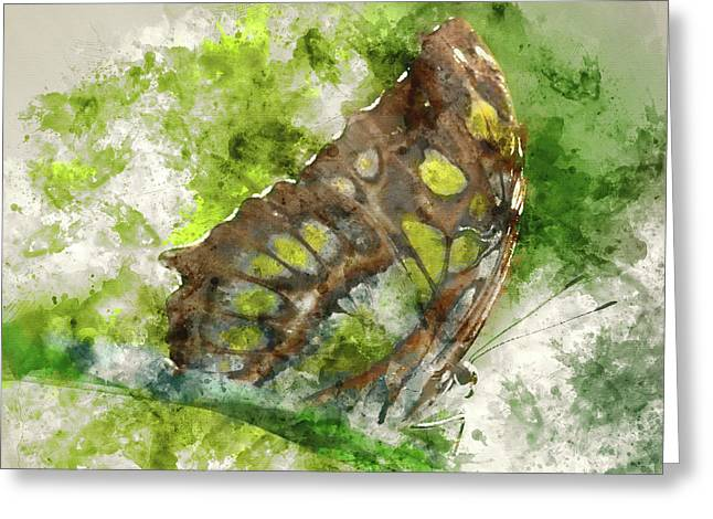 Butterfly Close Up Digital Watercolor On Photograph Greeting Card by Brandon Bourdages