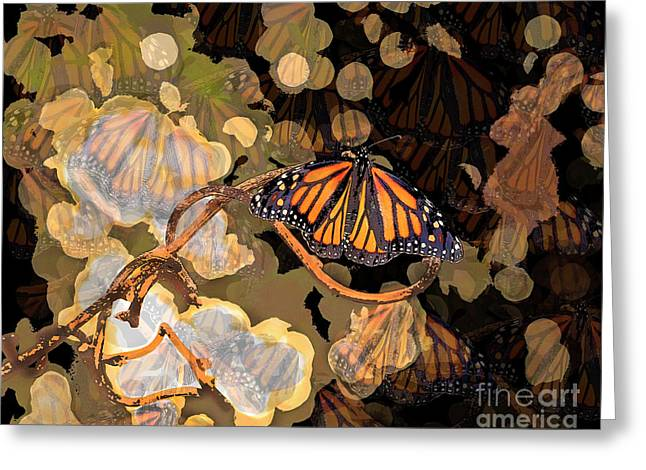 Butterfly Creative Art Greeting Card by Luana K Perez