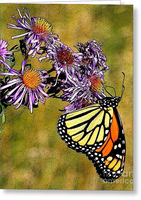 Butterfly Delight Greeting Card by Diane E Berry