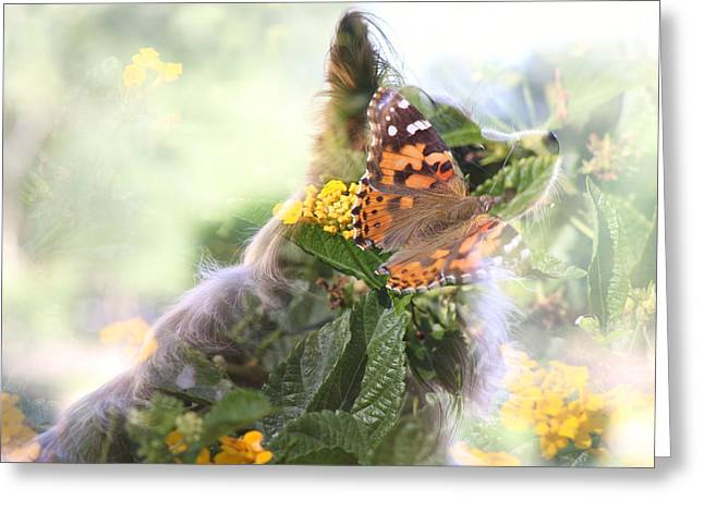 Butterfly Dog Greeting Card
