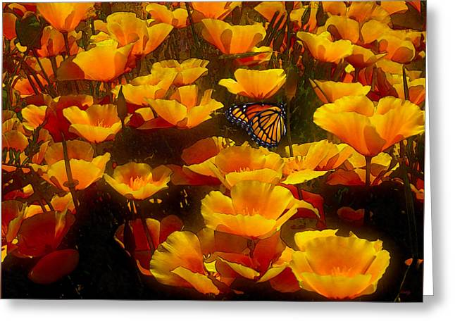 Butterfly Effect Greeting Card by Robby Donaghey