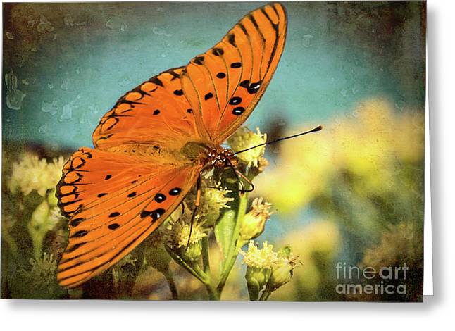 Butterfly Enjoying The Nectar Greeting Card