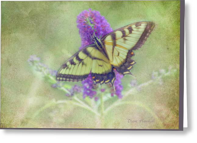 Butterfly Fantasy Greeting Card by Diane Hawkins