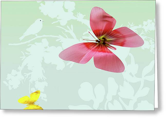 Butterfly Floral  4 Greeting Card