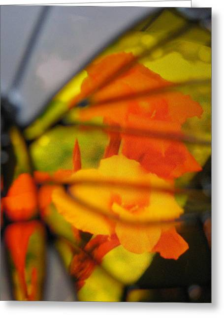 Photos Of Autumn Digital Greeting Cards - Butterfly Florals  Collection D Greeting Card by Debra     Vatalaro