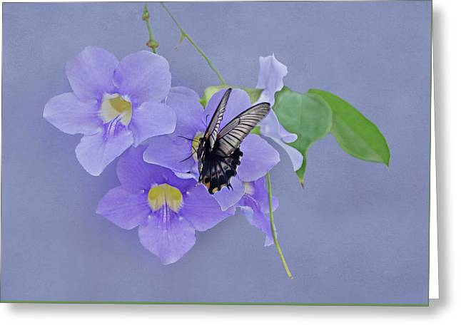 Butterfly Fluttering Greeting Card